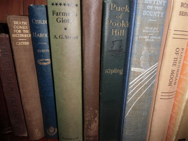 Blog Photo - Books Older