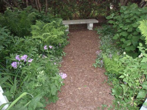 Mama's Garden Pathway May 2015
