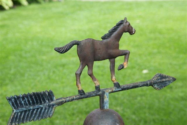 Blog Photo - Garden Horse