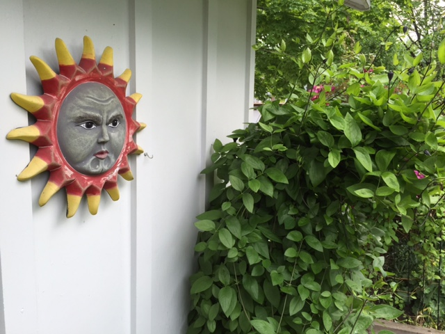 Blog Photo - Garden Sun face