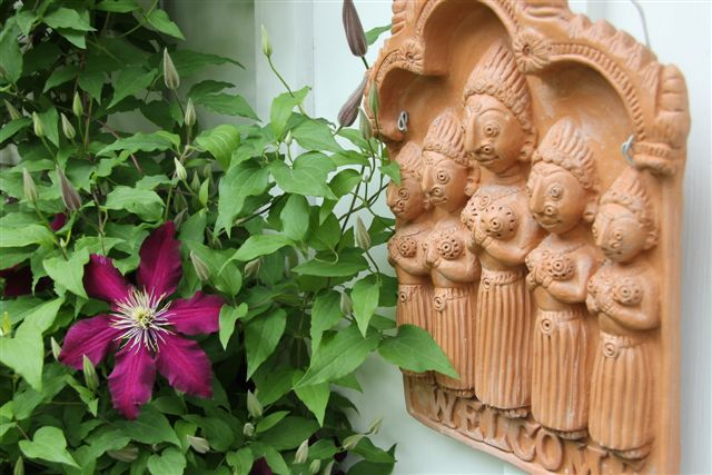 Blog Photo - Garden - welcome clematis