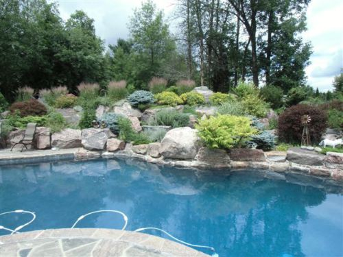 Blog Photo - Book Club Pool and Rock Garden