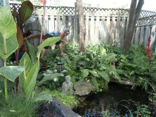Blog Photo - Gail pulling weeds