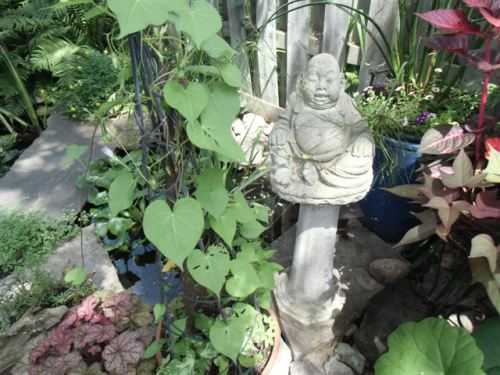 Blog Photo - Gail's Garden Buddha