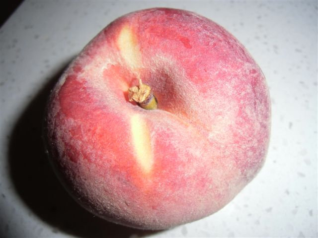 Blog Photo - Peach
