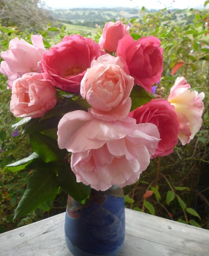 Blog flowers For Val from Gallivanta