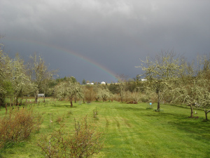Blog Photo Lavinia and Rick Story Rainbow over SBF