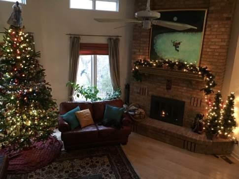blog-photo-christmas-2016-family-room