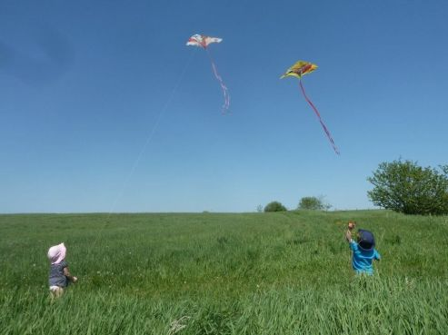 Blog Photo - Doors Open Nick photo of Grandkids and kites.JPG