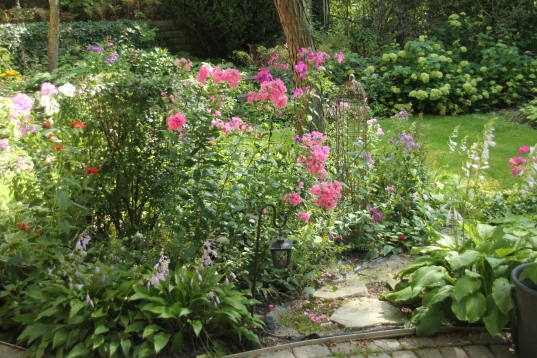 Blog Photo - Garden with Phlox