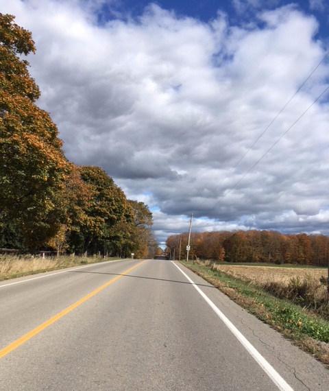 Blog Photo - Autumn road ahead