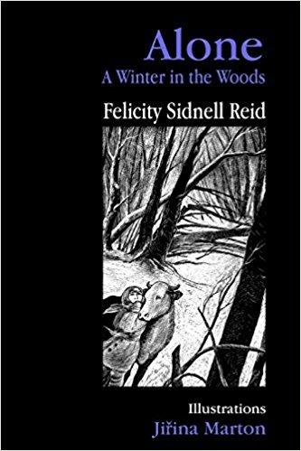 Blog Photo - Felicity Book Cover