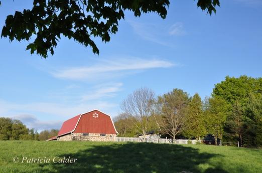 SOTH - Patricia Calder Red Barn