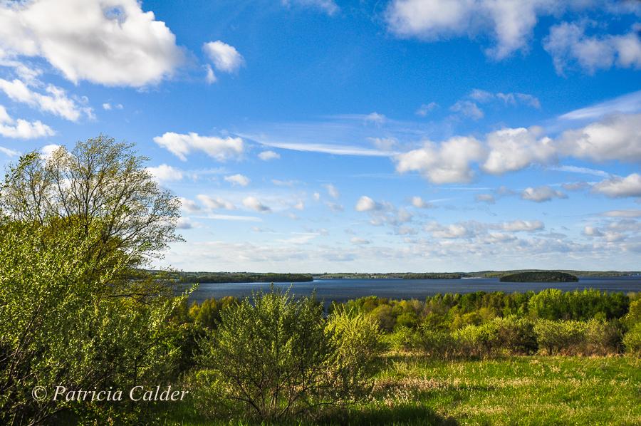 SOTH - Patricia Calder-View of Rice Lake