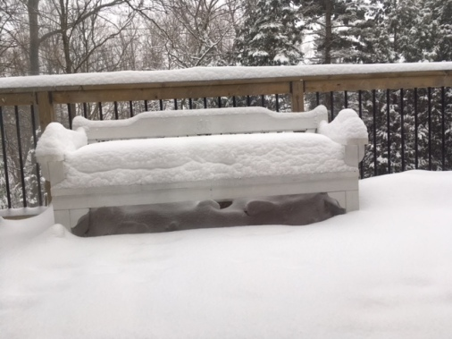 Blog Photo - Snow on bench 2