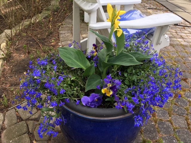 Blog Photo - Spring 2018 Blue Pot and Chair