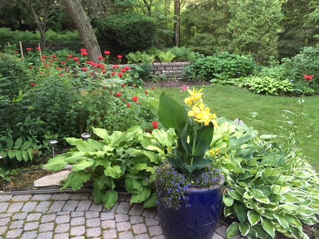 Blog Photo - Garden - Beautiful long shot to wall