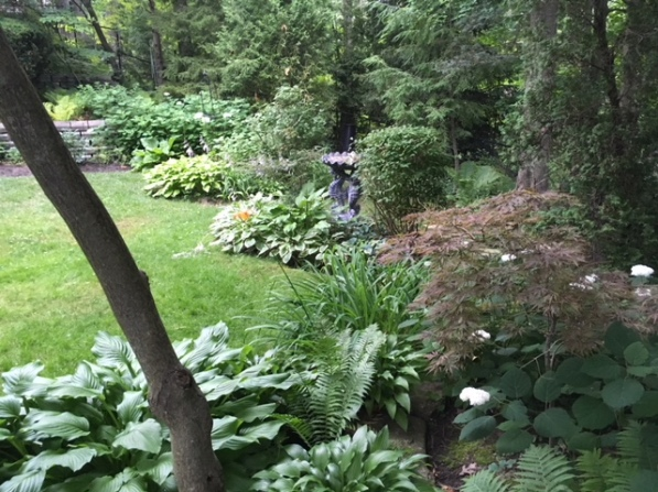 Blog Photo - Garden beauty shot July 2018 -- back garden with trees and beds and walls