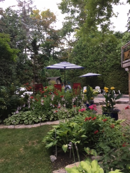Blog Photo - Garden Longshot with open umbrellas