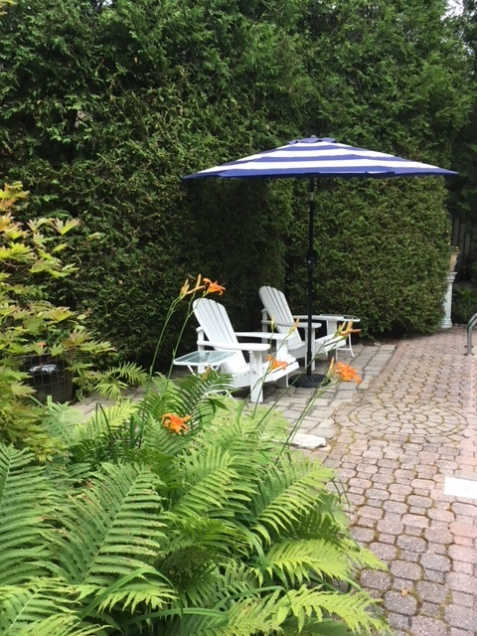 Blog Photo - Garden umbrella and chairs from other side of pool