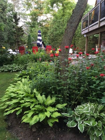 Blog Photo - Red Bee Balm and Red Chairs
