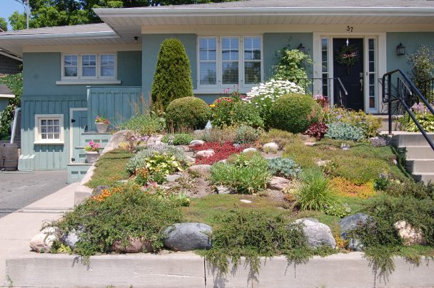 Blog Photo - Carol garden at front with plants and house front