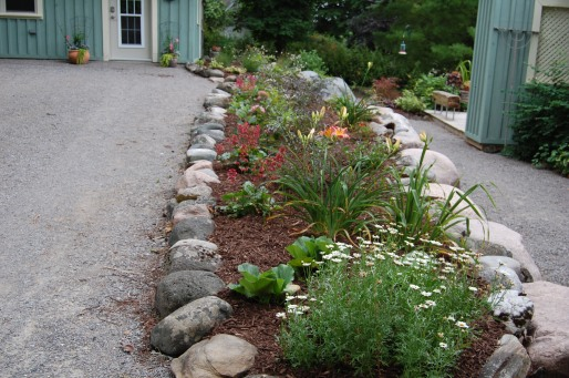 Blog Photo - Carol garden bed well mulched