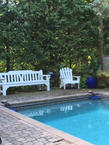Blog Photo - Garden Sept 2018 benches and blue pot by pool