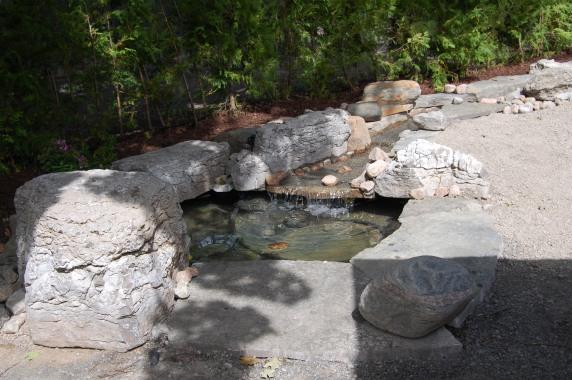 Blog Photo - wayne's Foutain closer of pond and cedars and rocks