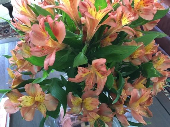 Blog Photo - Flowers Orange