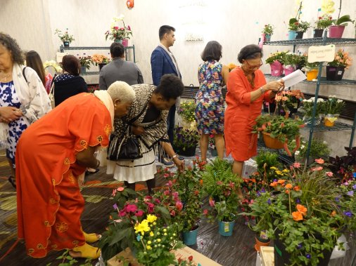 Blog Photo - PACE Guests at the Enchanted Gardens Sale