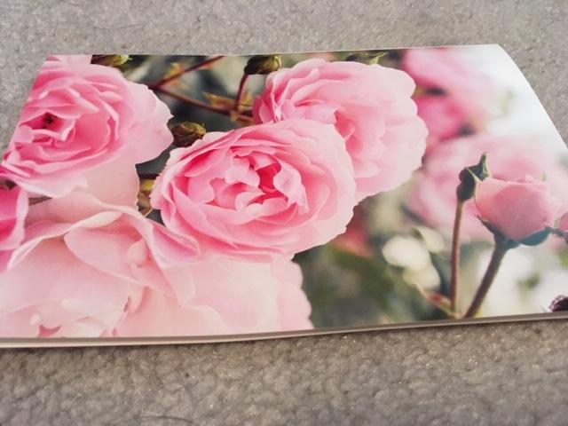 Blog Photo - Greeting Card - Peonies