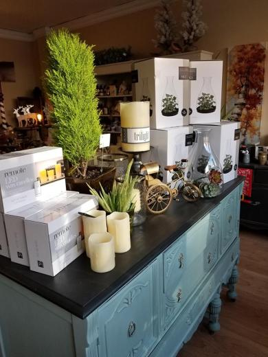 Blog Photo - the Willow Branch display of succulents and candles etc