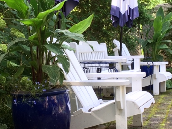 Blog Photo - Late summer garden - chairs and umbrellas CU