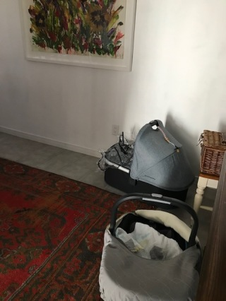 Blog Photo - Baby bassinet and car seat in dining room