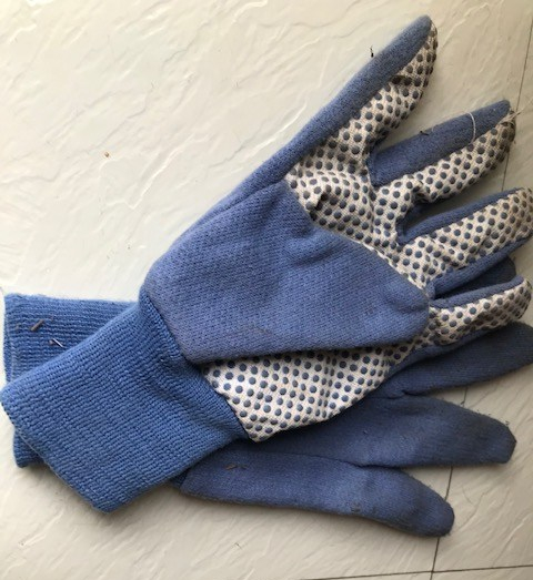 Blog Photo - Garden gloves2