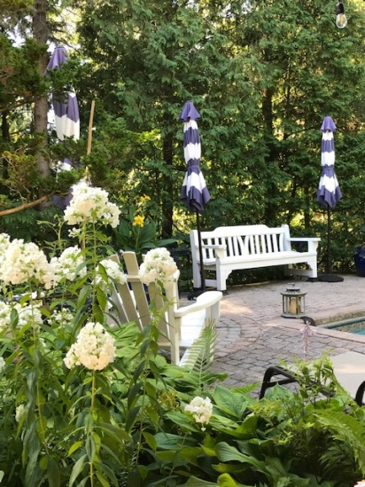Blog Photo - Garden August - White Phlox and Garden Bench